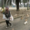 Woman surrounded by bunny rabbits