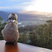 Image 9: bird