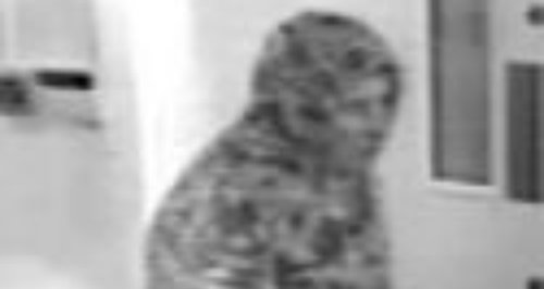 CCTV image released by Wiltshire Police investigat