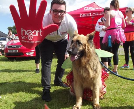 WOOF For Life Cardiff 2015