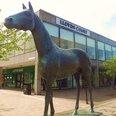 Lloyds Horse at CMK