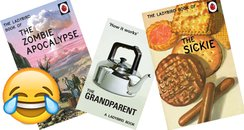 Ladybird books for Grown Ups adult only